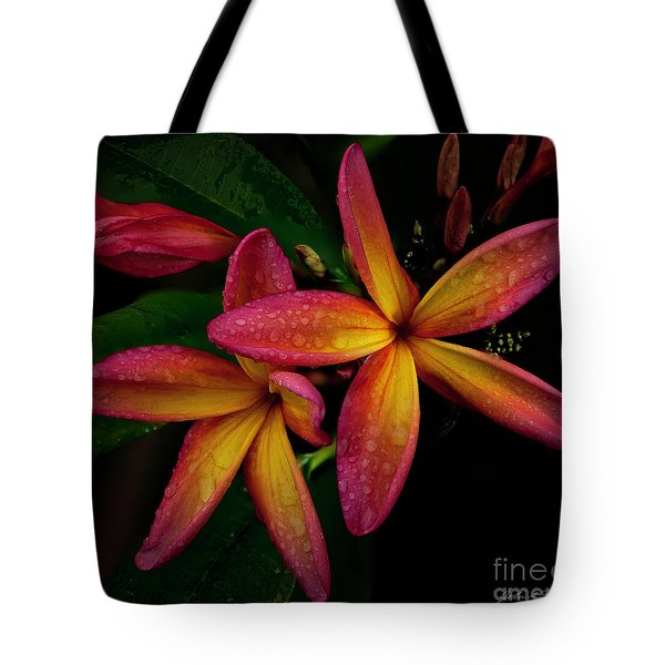 Red/yellow Plumeria In Bloom Tote Bag