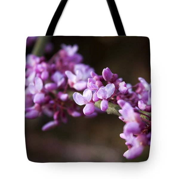 Tote Bag featuring the photograph Redbuds In March by Jeff Severson