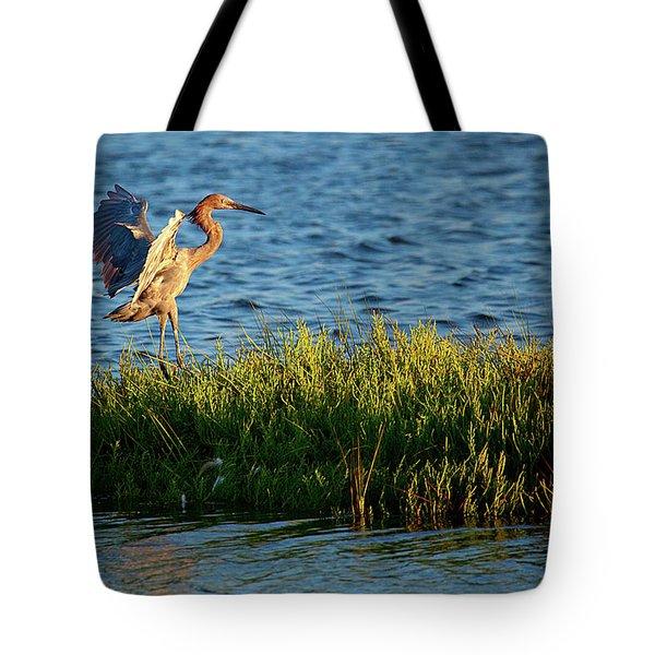 Reddish Egret Landing Tote Bag