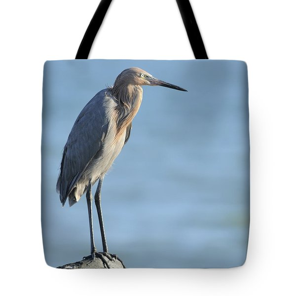 Tote Bag featuring the photograph Reddish Egret Perched On A Jetty Rock by Bradford Martin