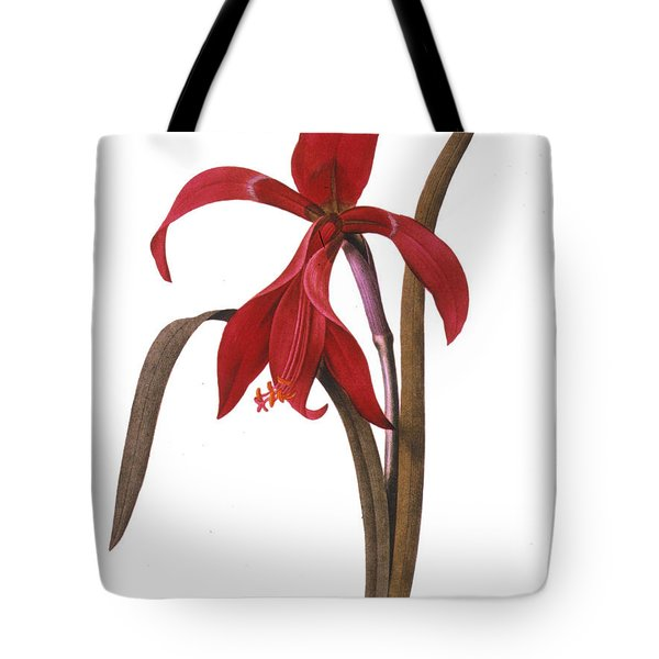 Redout�: St. James Lily Tote Bag by Granger