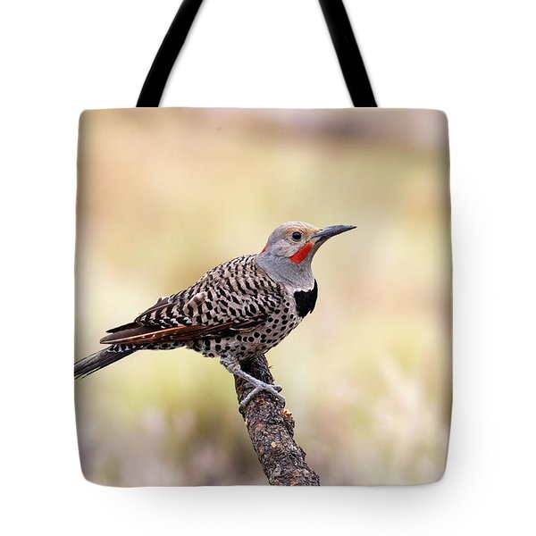 Redshafted Northern Flicker Tote Bag