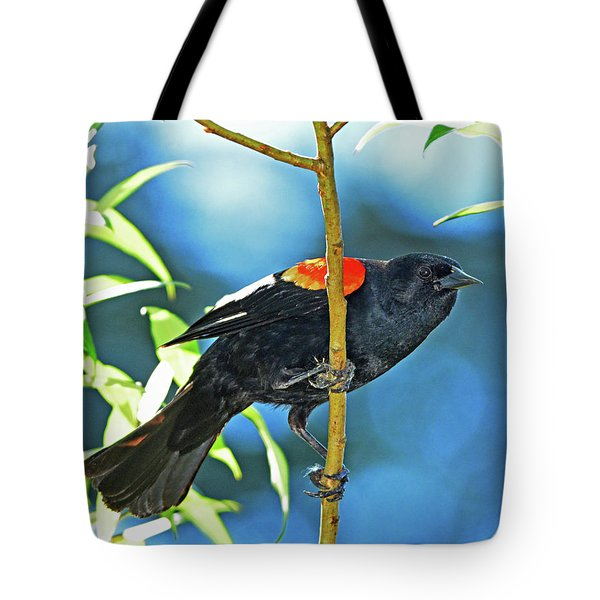 Redwing Blackbird Tote Bag