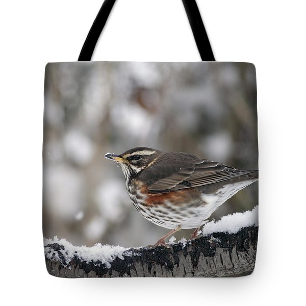 Redwing Perched On A Snowy Branch Tote Bag