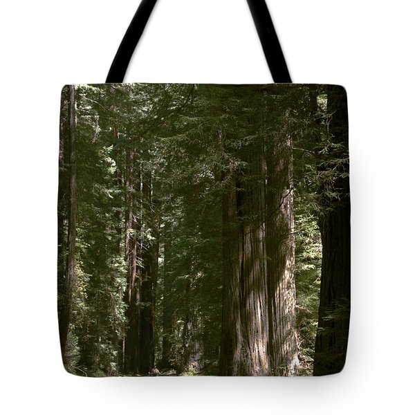 Redwood Highway Tote Bag by Wes and Dotty Weber