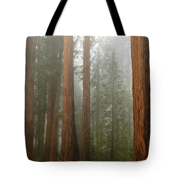 Redwood Trees In Fog Tote Bag
