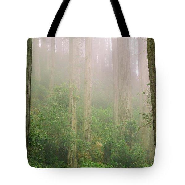 Redwoods Fog Tote Bag