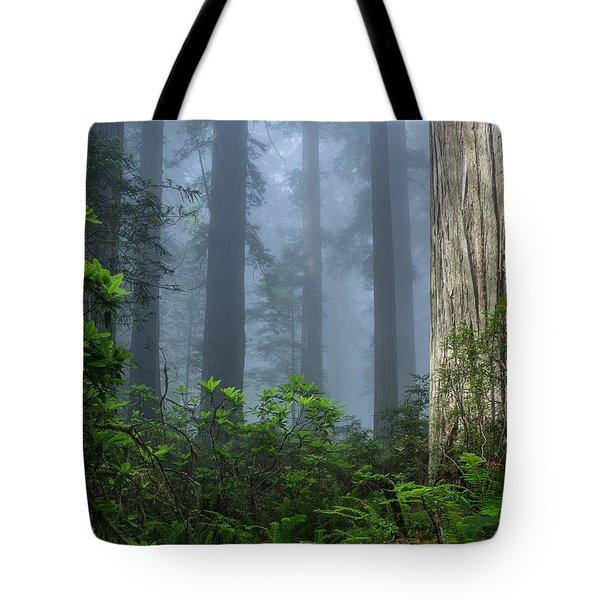 Redwoods In Blue Fog Tote Bag