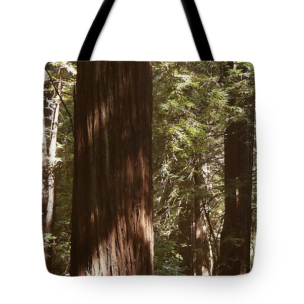 Redwoods Tote Bag by Mike McGlothlen