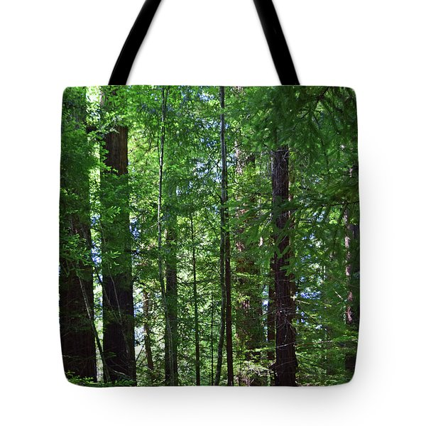 Redwoods No. 3-1 Tote Bag