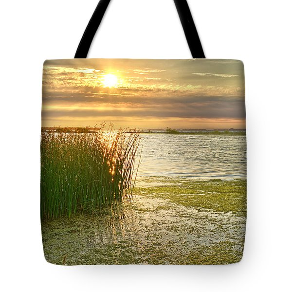 Reeds In The Sunset Tote Bag