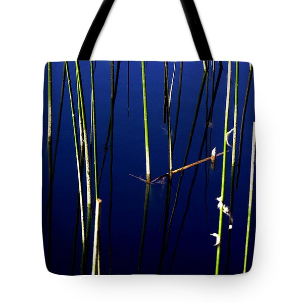 Reeds Of Reflection Tote Bag by Chris Brannen