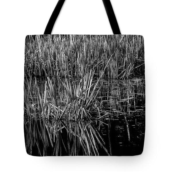 Reeds Reflection  Tote Bag