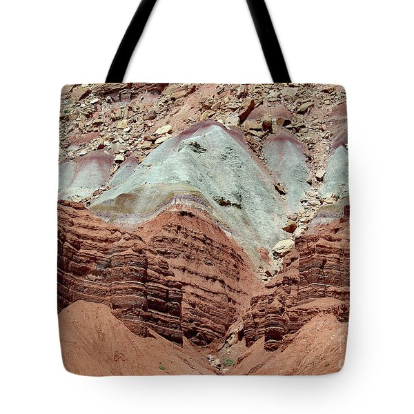 Tote Bag featuring the photograph Reef Colors by PJ Boylan