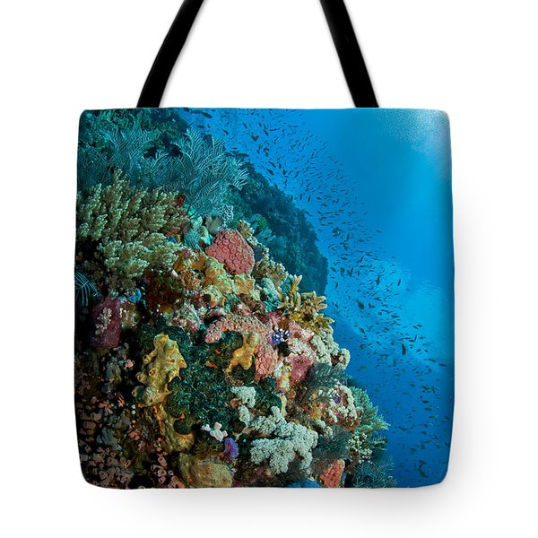 Reef Scene With Corals And Fish Tote Bag by Mathieu Meur