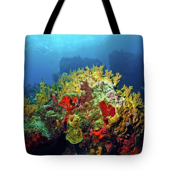 Reef Scene With Divers Bubbles Tote Bag