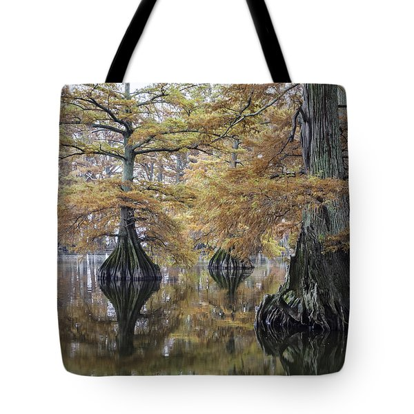 Reelfoot Lake 05 Tote Bag