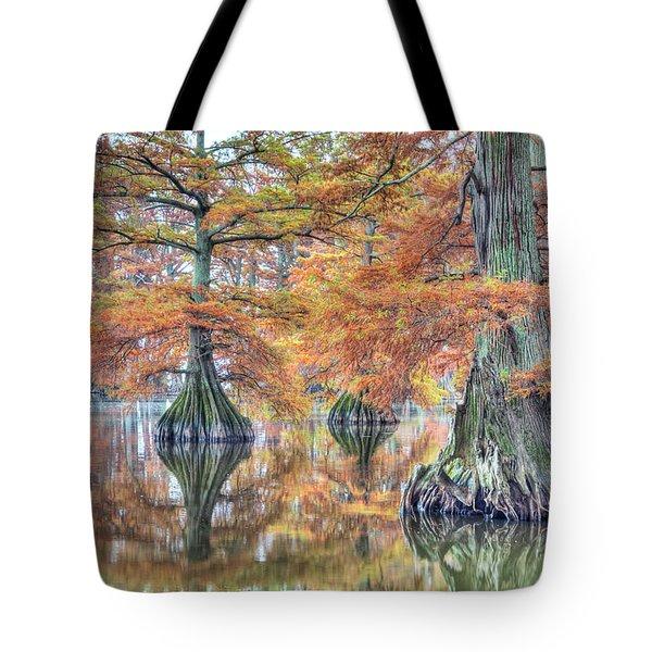 Reelfoot Lake 2015 05-2 Tote Bag