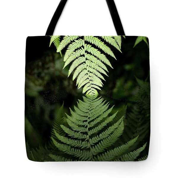 Reflected Ferns Tote Bag