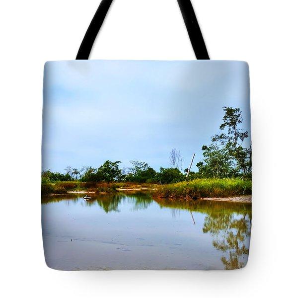 Englewood Beach Tote Bag