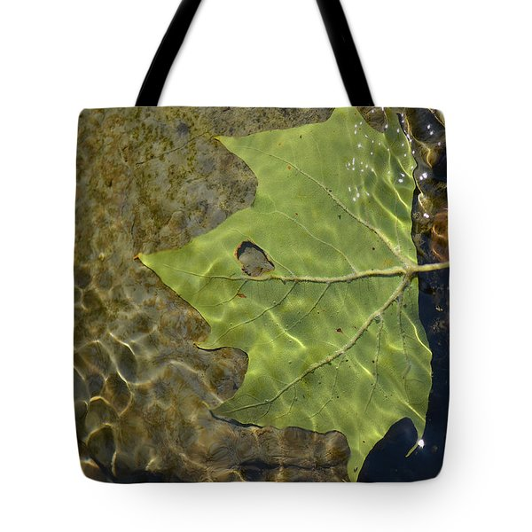 Reflected Indignation Tote Bag