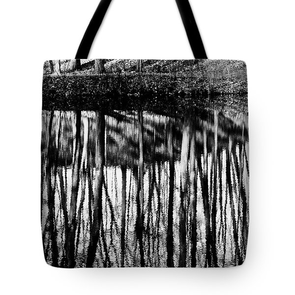 Reflected Landscape Patterns Tote Bag