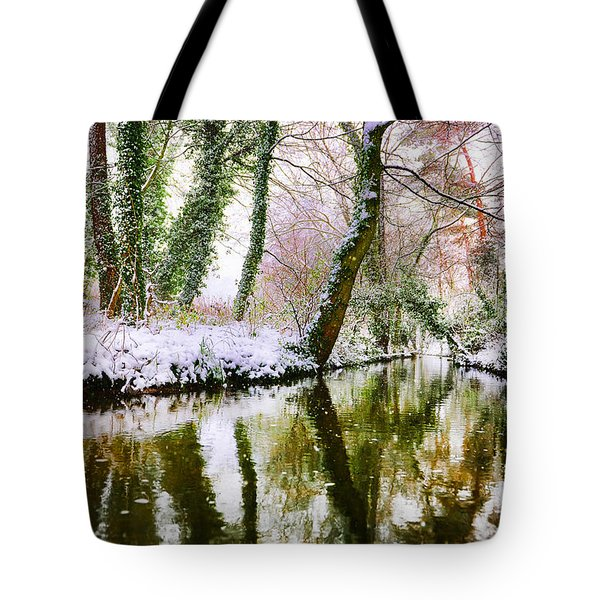 Reflected Winter Tote Bag
