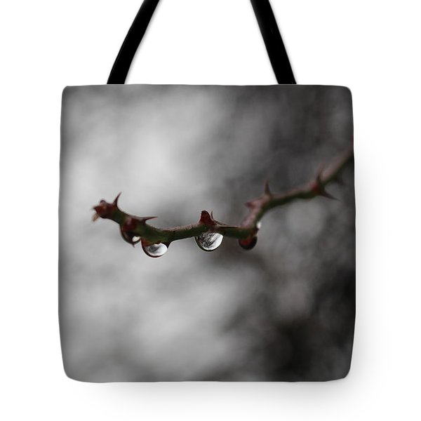 Reflected World  Tote Bag