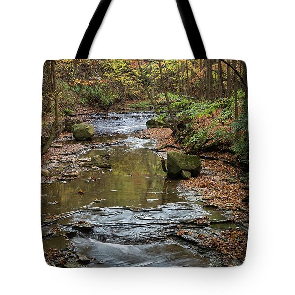 Tote Bag featuring the photograph Reflecting Autumn by Dale Kincaid