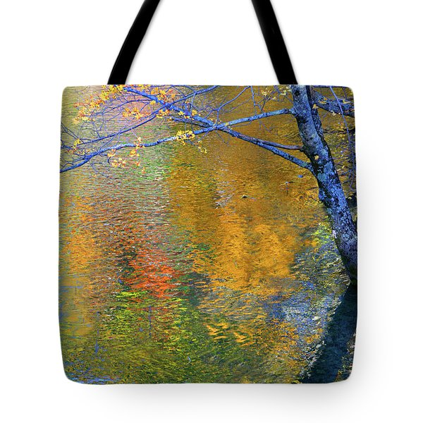 Reflecting Autumn Tote Bag