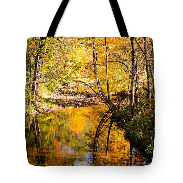 Reflecting Fall Tote Bag by Mary Timman