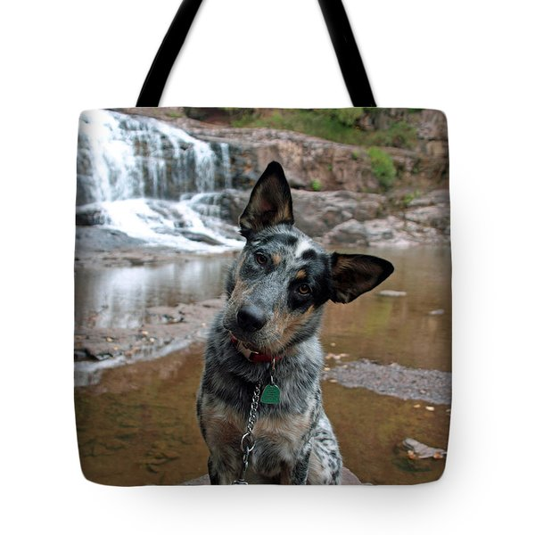 Tote Bag featuring the photograph Reflecting by James Peterson