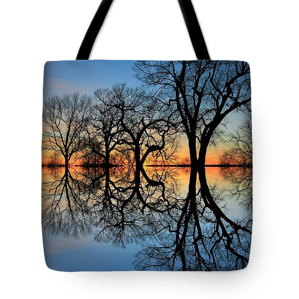 Tote Bag featuring the photograph Reflecting On Tonight by Chris Berry