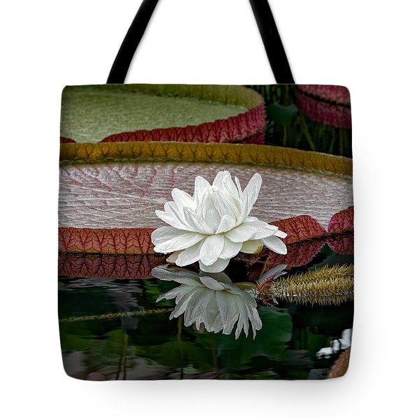 Tote Bag featuring the photograph Reflecting Pond by Phil Abrams