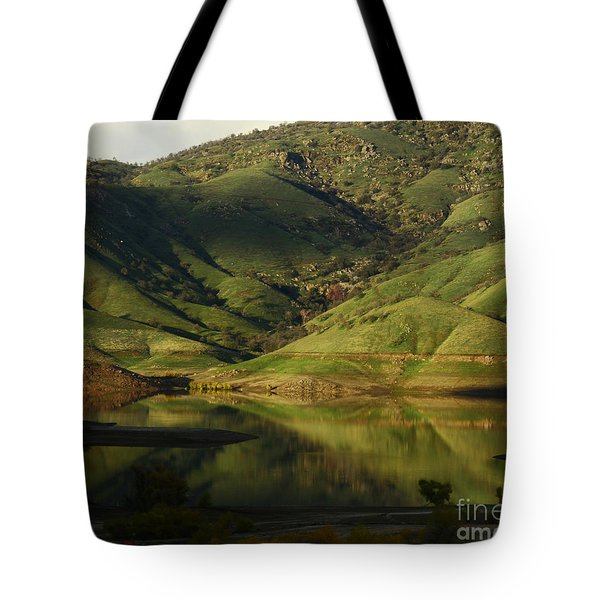 Reflection And Shadows Tote Bag