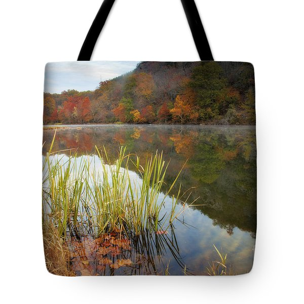 Reflection In The Fort River Tote Bag by Iris Greenwell