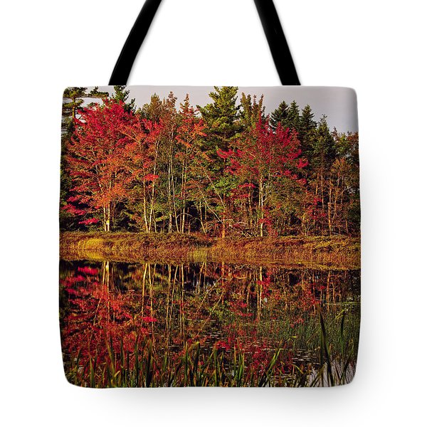 Tote Bag featuring the photograph Reflection Island by Kathleen Sartoris