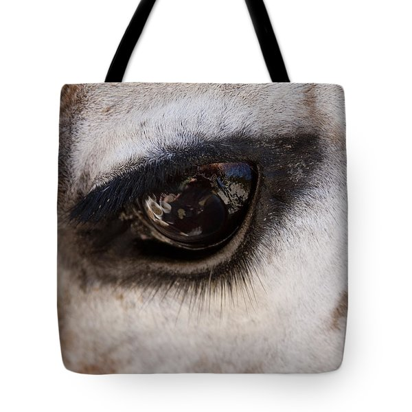 Reflection Of A Friend Tote Bag