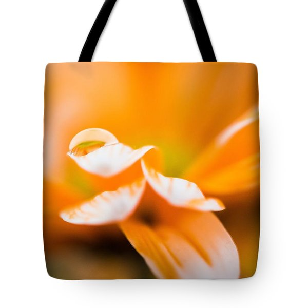 Reflection Of Yourself Tote Bag