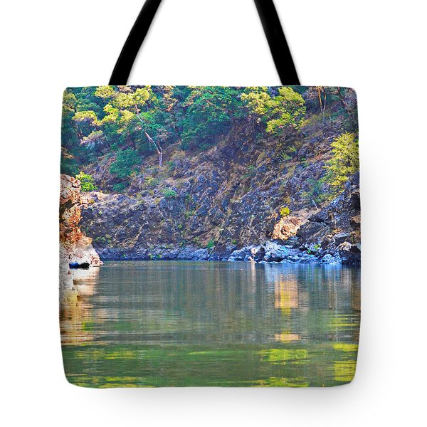 Reflection On The Rogue Tote Bag