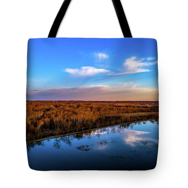 Reflection Pool Tote Bag