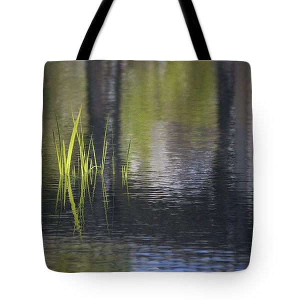 Reflections Accents Tote Bag