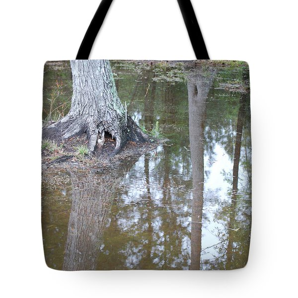 Reflections Tote Bag by Gordon Mooneyhan