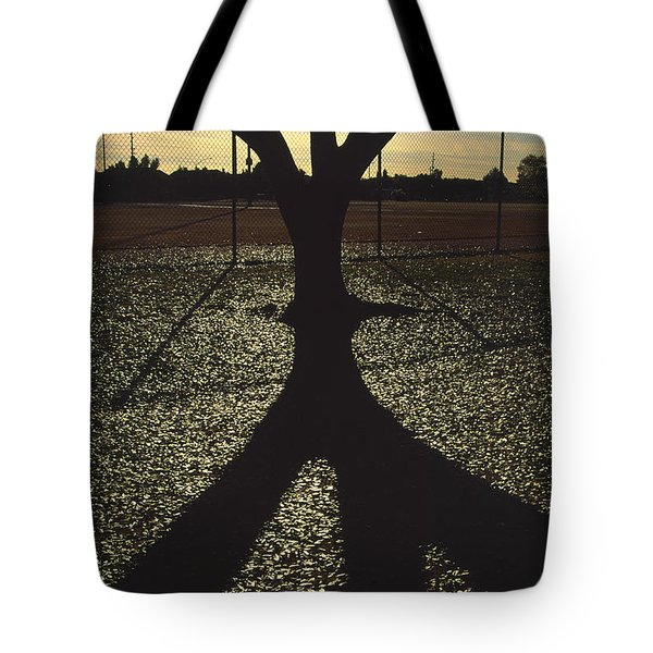 Reflections In A Park Tote Bag