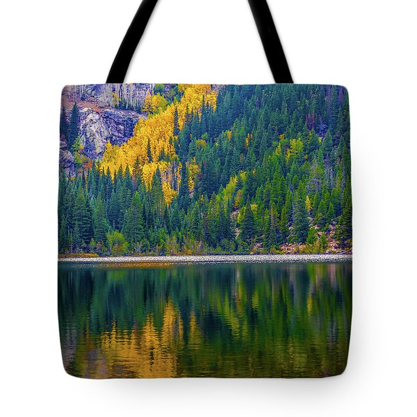 Reflections Tote Bag by Jon Burch Photography