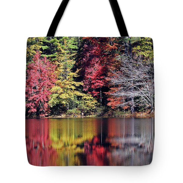 Reflections Of A Bare Tree Tote Bag