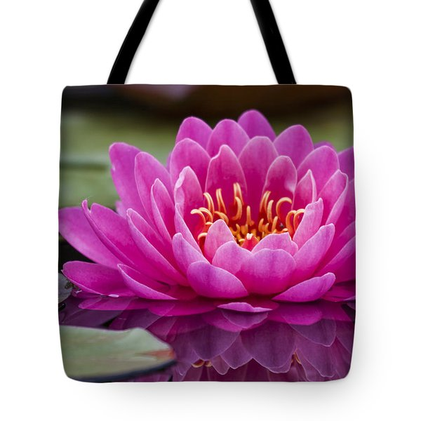 Reflections Of A Waterlily Tote Bag