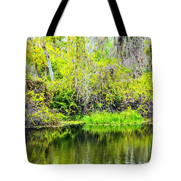 Tote Bag featuring the photograph Reflections On A Beautiful Day by Madeline Ellis