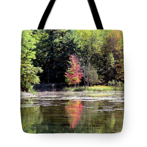 Reflections On The Rift Tote Bag