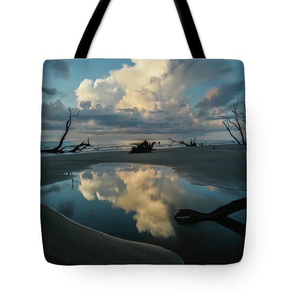 Tote Bag featuring the photograph Reflections by Ronald Santini